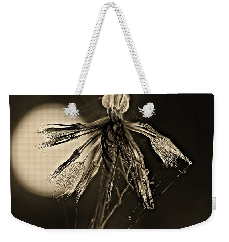 Weed Weekender Tote Bag featuring the photograph Finale Sepia by Steve Harrington