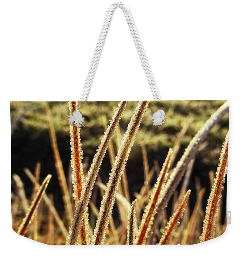 Fingers Weekender Tote Bag featuring the photograph Fingers Of Frost by Steve Taylor