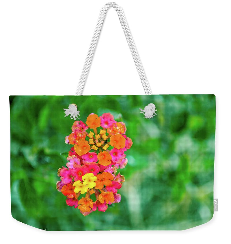 Flower Weekender Tote Bag featuring the photograph Fireworks by Shannon Harrington