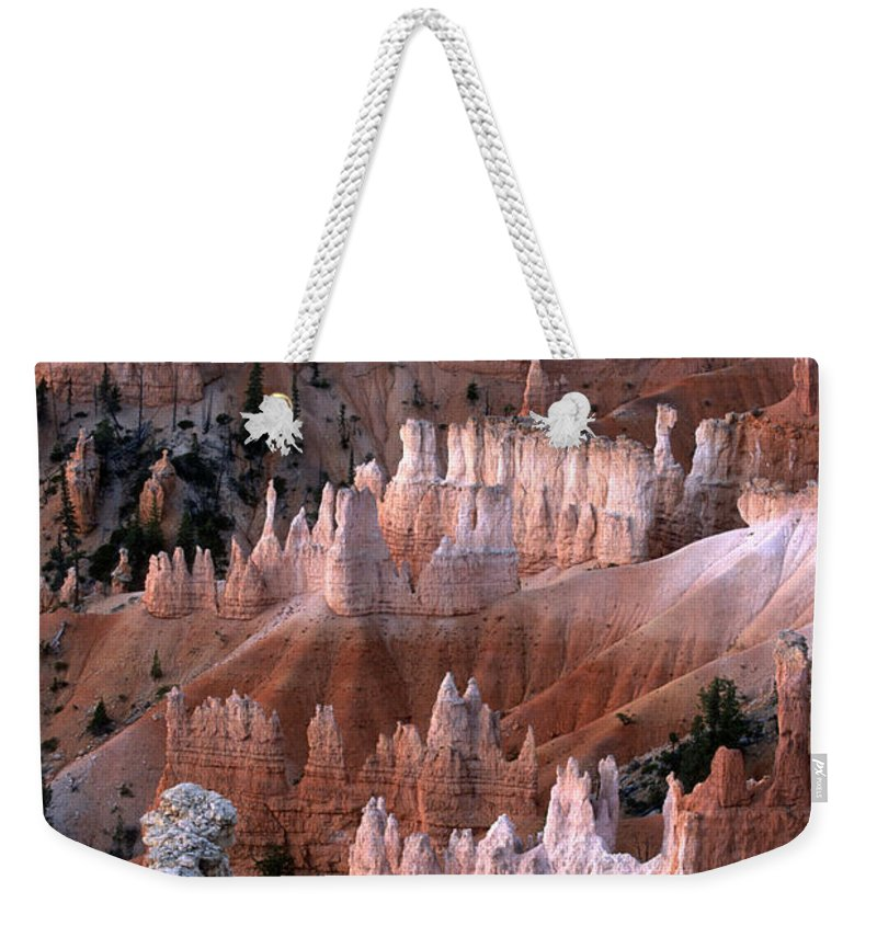 Sandra Bronstein Weekender Tote Bag featuring the photograph First Light In Bryce Canyon by Sandra Bronstein