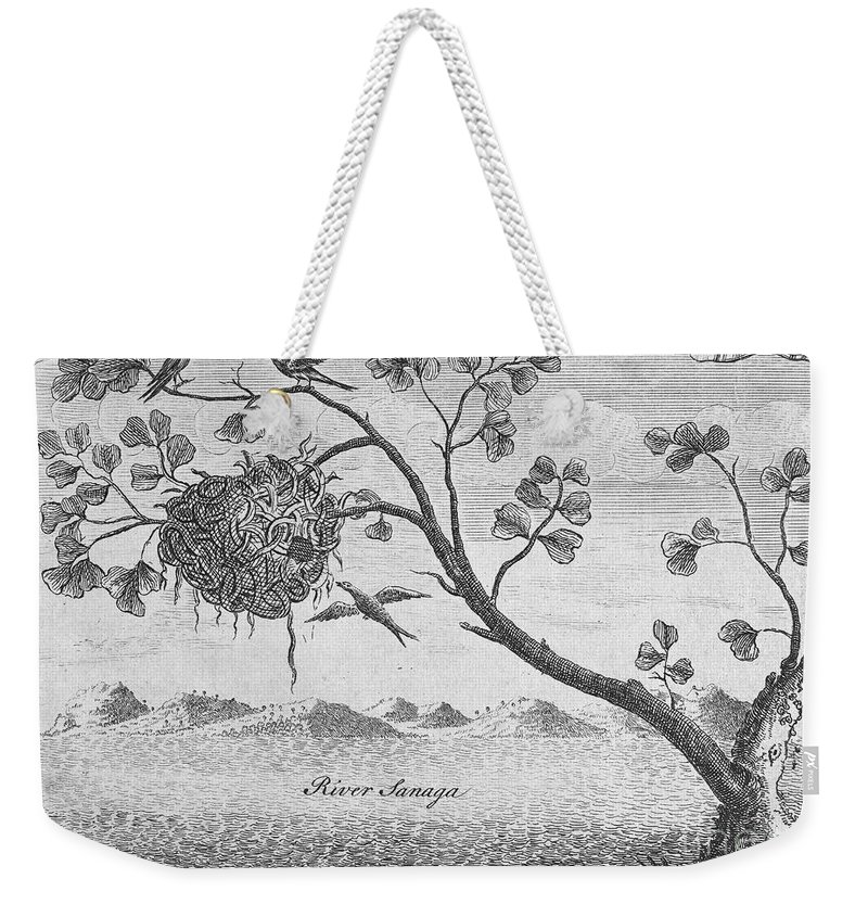 18th Century Weekender Tote Bag featuring the photograph Fisher Bird by Granger