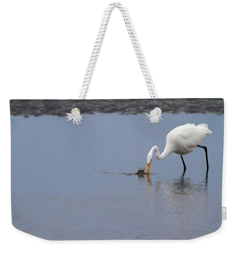 Egret Weekender Tote Bag featuring the photograph Fishing For A Meal by Karol Livote