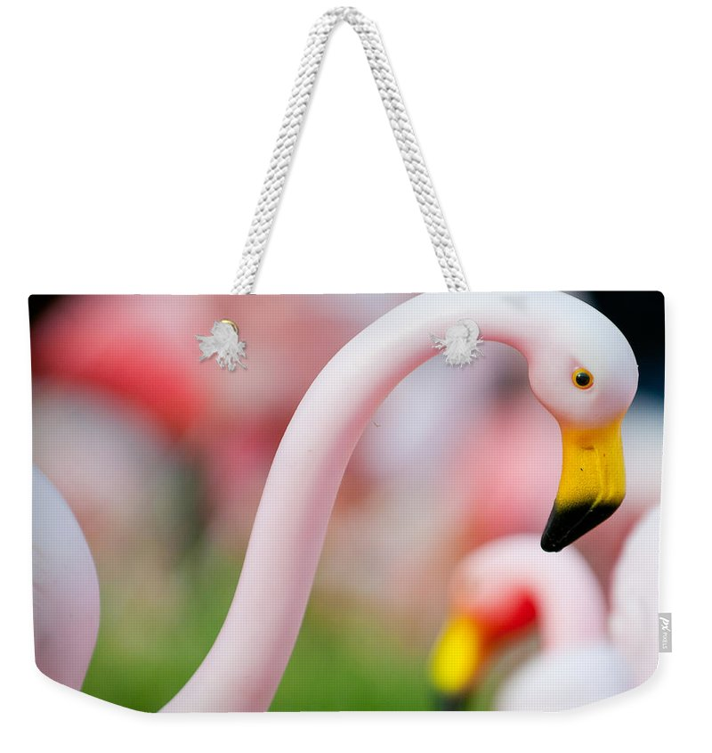 Austin Weekender Tote Bag featuring the photograph Flamingo 5 by Sean Wray
