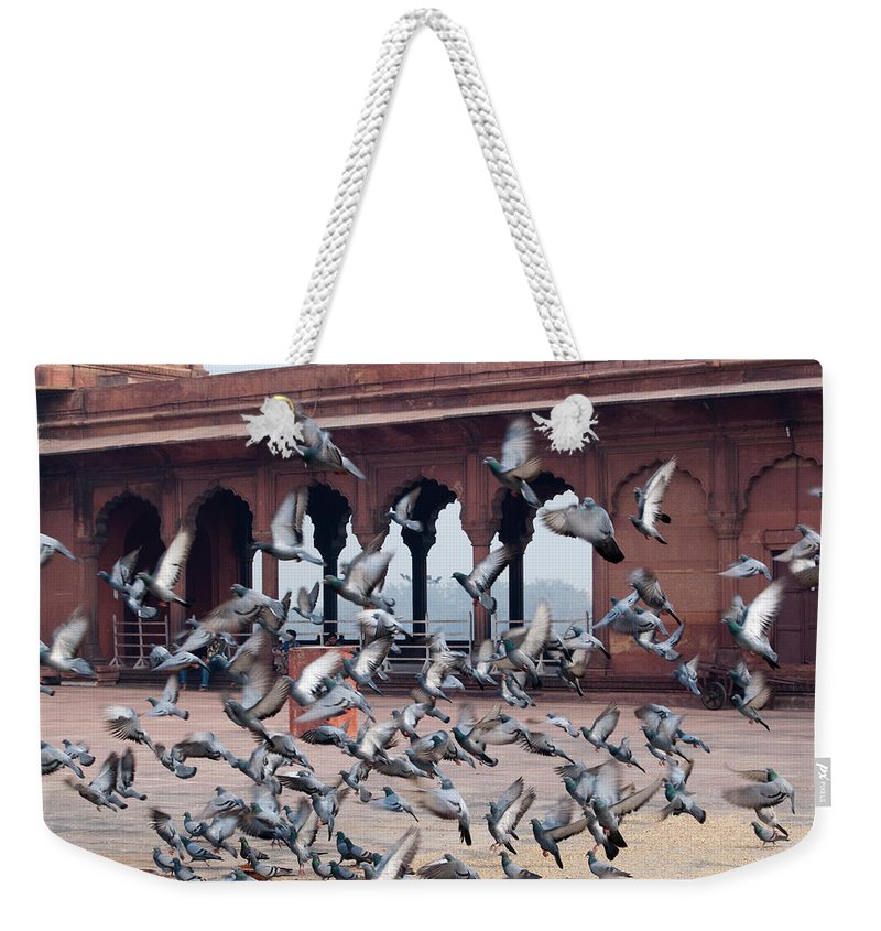 Bird Weekender Tote Bag featuring the photograph Flight Of Pigeons Inside The Jama Masjid In Delhi by Ashish Agarwal