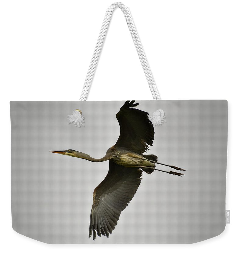 Great Blue Heron Weekender Tote Bag featuring the photograph Flight Of The Great Blue Heron by Saija Lehtonen