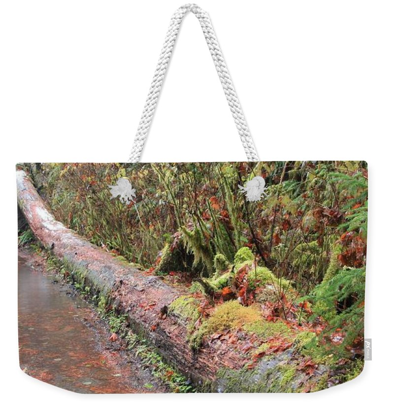 Hoh Rainforest Weekender Tote Bag featuring the photograph Flooded Bridge by Adam Jewell