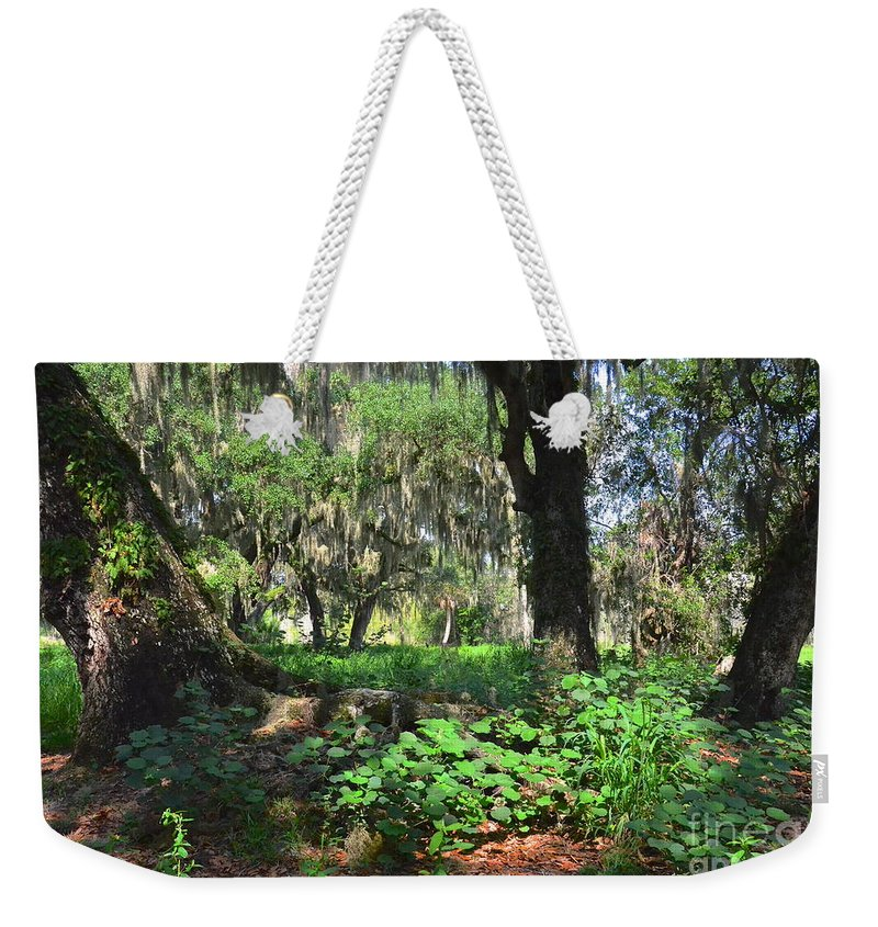 Forest Weekender Tote Bag featuring the photograph Florida Forest by Carol Bradley