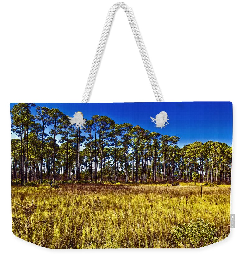 Art Weekender Tote Bag featuring the photograph Florida Pine 3 by Skip Nall