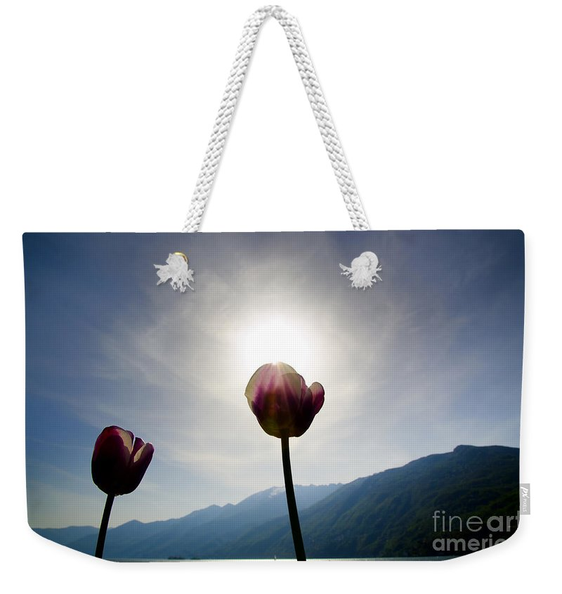 Flower Weekender Tote Bag featuring the photograph Flower And Sun by Mats Silvan