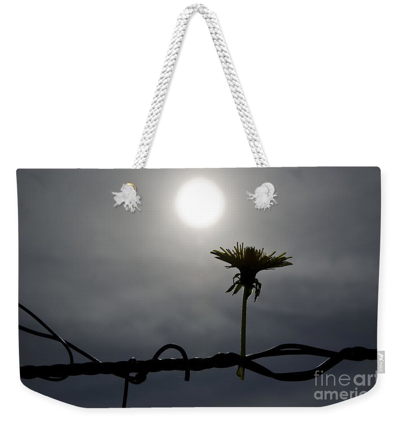 Flower Weekender Tote Bag featuring the photograph Flower On The Fence by Mats Silvan