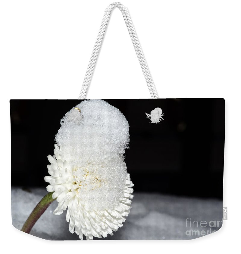Flower Weekender Tote Bag featuring the photograph Flower With Snow by Mats Silvan