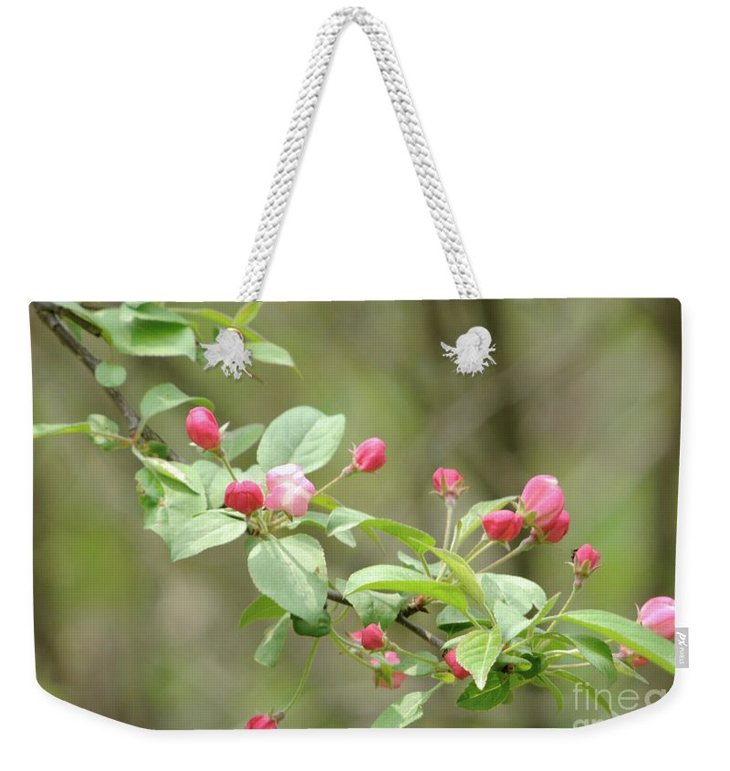 Green Weekender Tote Bag featuring the photograph Flowering Tree by Ronald Grogan