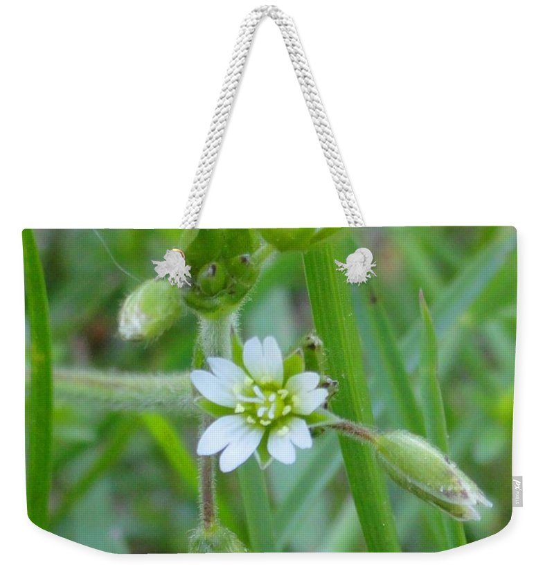 Flower Weekender Tote Bag featuring the photograph Flowers Of The Grass by Meandering Photography