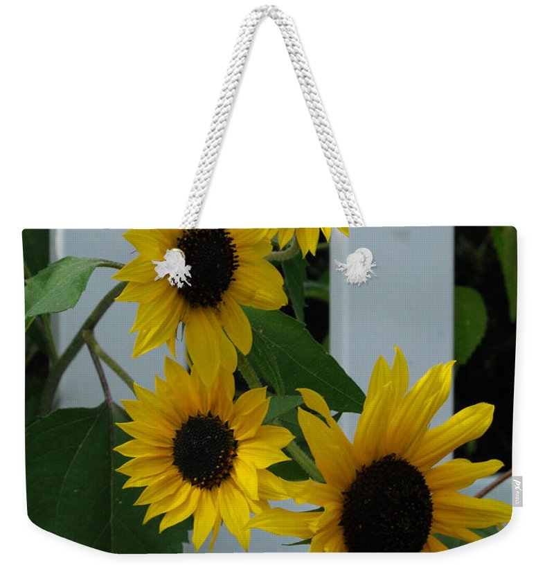 Sunflowers Weekender Tote Bag featuring the photograph Flowers On A Fence by Grace Grogan