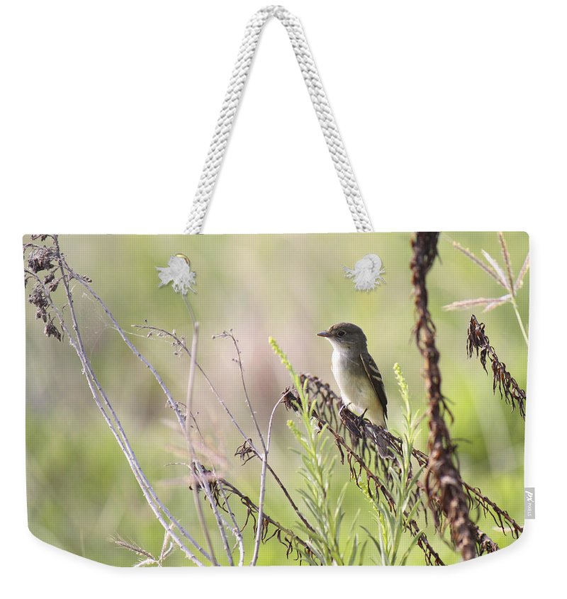 Roena King Weekender Tote Bag featuring the photograph Flycatcher On A Twig by Roena King
