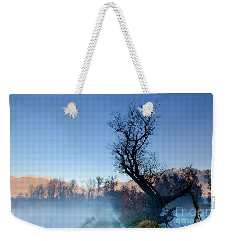 Road Weekender Tote Bag featuring the photograph Foggy Road With A Tree by Mats Silvan