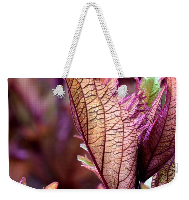 Those Weekender Tote Bag featuring the photograph For Those Who Say There Is No God - He Is by Maria Urso