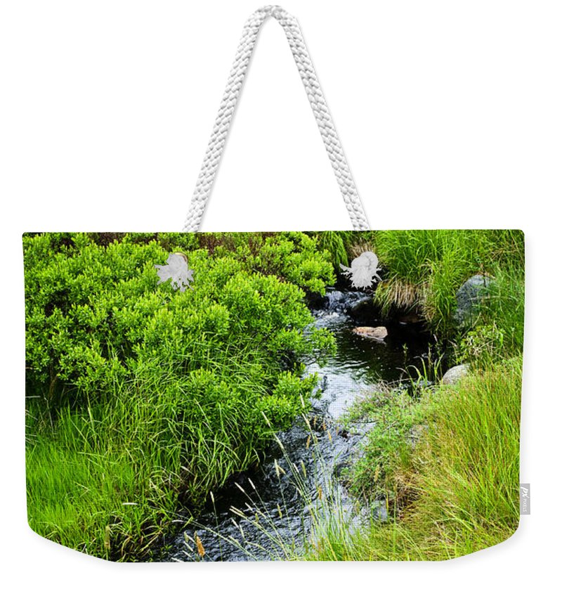 Creek Weekender Tote Bag featuring the photograph Forest Creek In Newfoundland by Elena Elisseeva