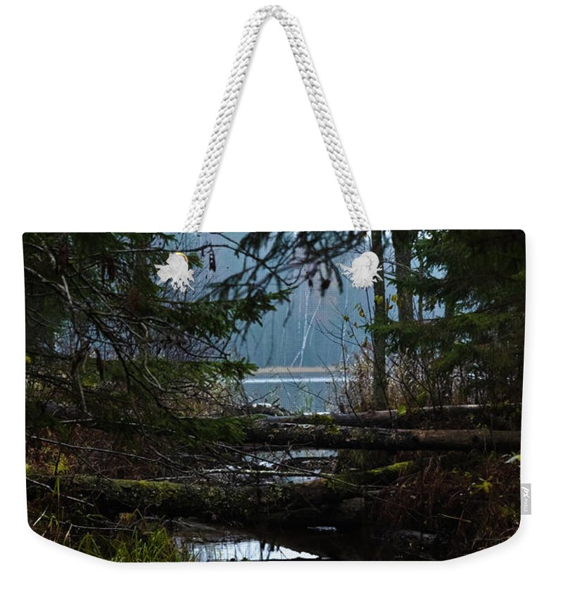 Autumn Weekender Tote Bag featuring the photograph Forest Lake by Michael Goyberg