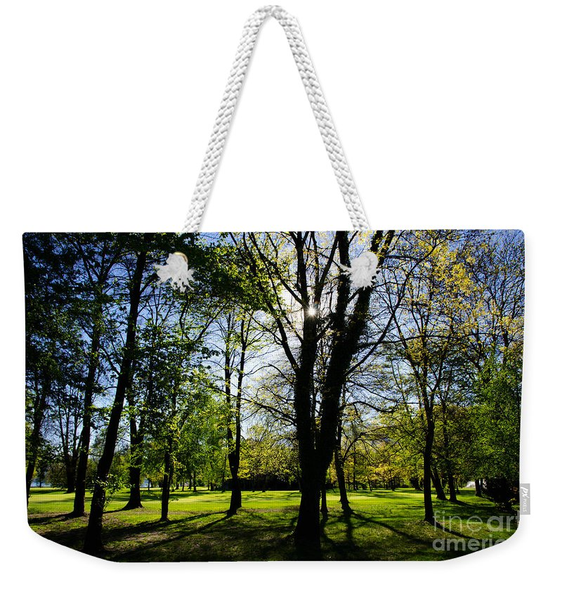Trees Weekender Tote Bag featuring the photograph Forest by Mats Silvan