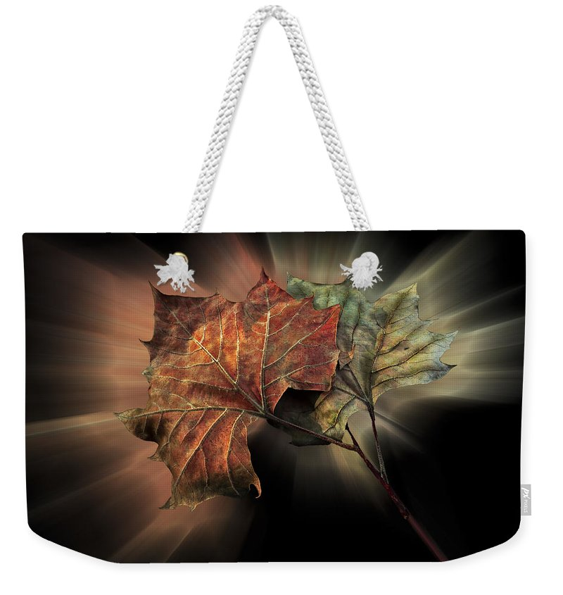 Appalachia Weekender Tote Bag featuring the photograph Forever Autumn by Debra and Dave Vanderlaan
