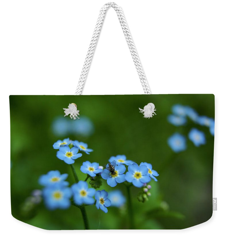 Horizontal Weekender Tote Bag featuring the photograph Forget-me-nots In Treman State Park, Ny by Tim Laman