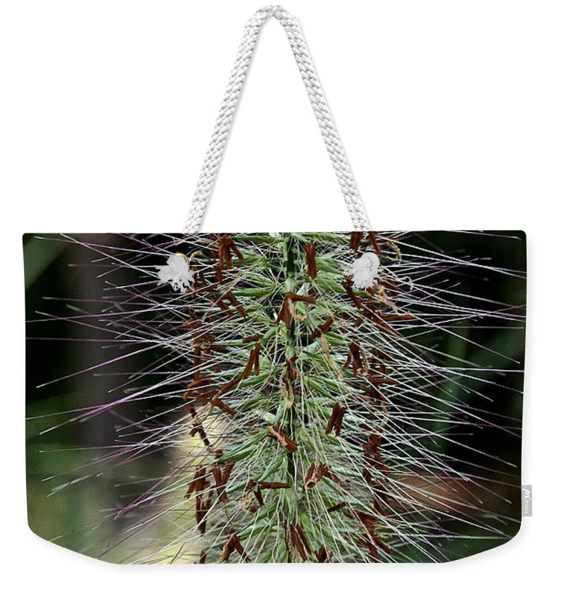 Plant Weekender Tote Bag featuring the photograph Fountain Grass Finger by Susan Herber