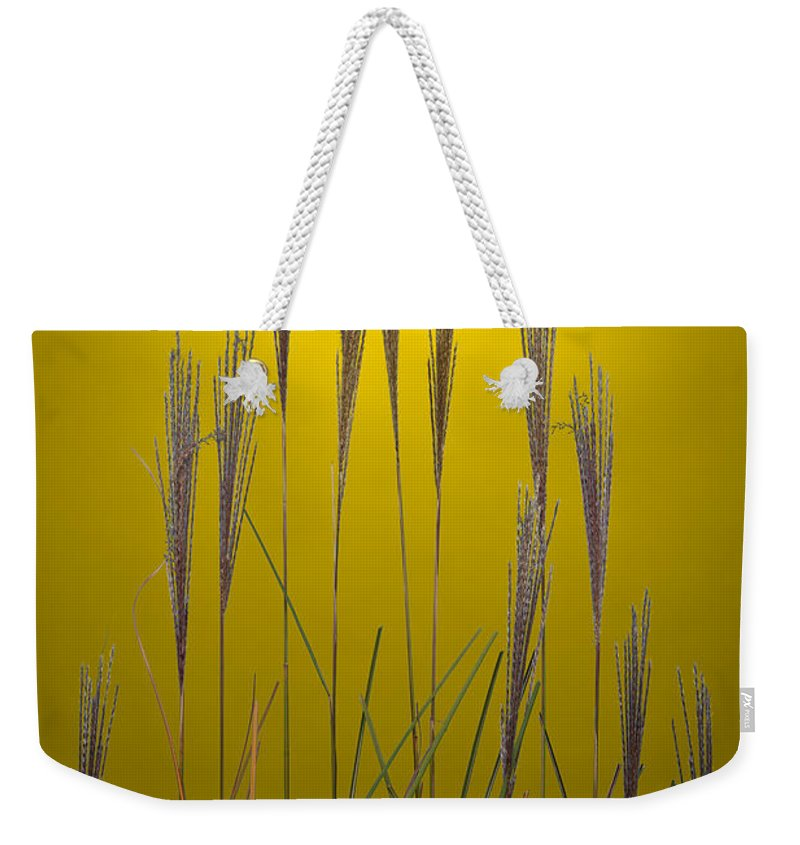 Grass Weekender Tote Bag featuring the photograph Fountain Grass In Yellow by Steve Gadomski