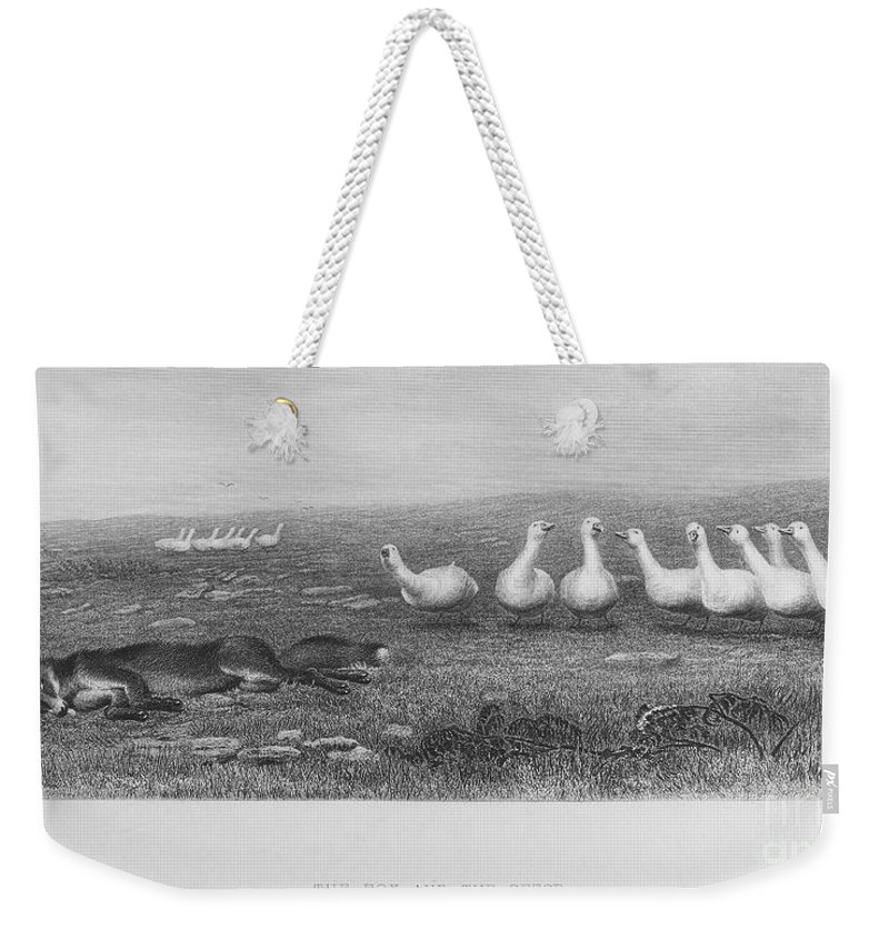 19th Century Weekender Tote Bag featuring the photograph Fox & Geese, 19th Century by Granger