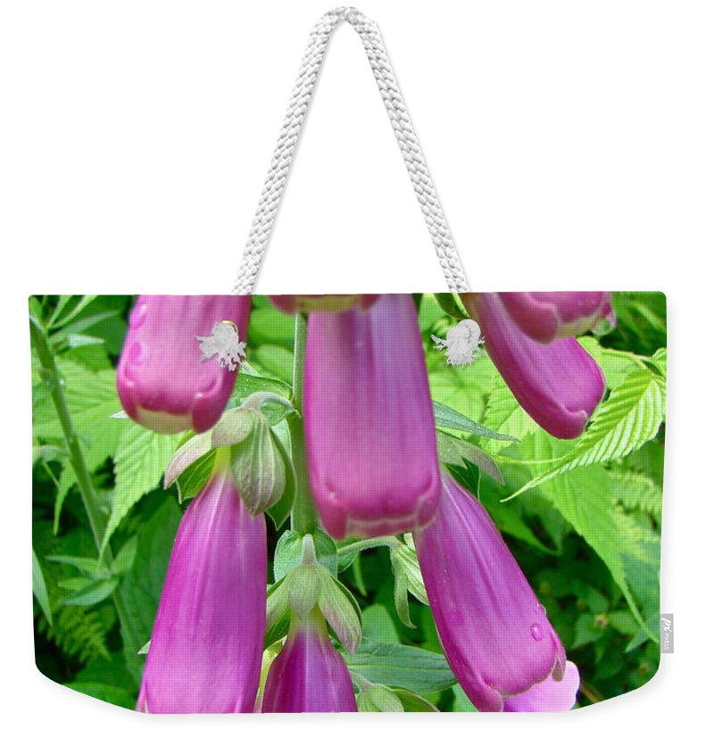 Foxgloves Weekender Tote Bag featuring the photograph Foxglove Flower Buds - Digitalis Purpurea by Mother Nature