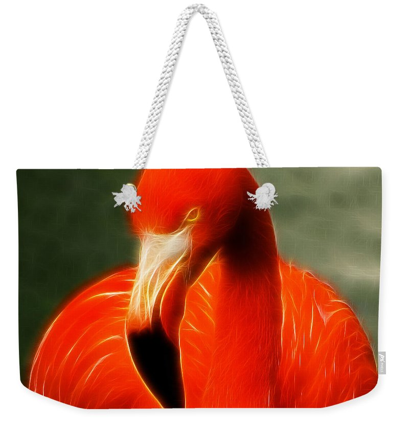 Flamingo Weekender Tote Bag featuring the photograph Fractalius Flamingo by Chris Thaxter