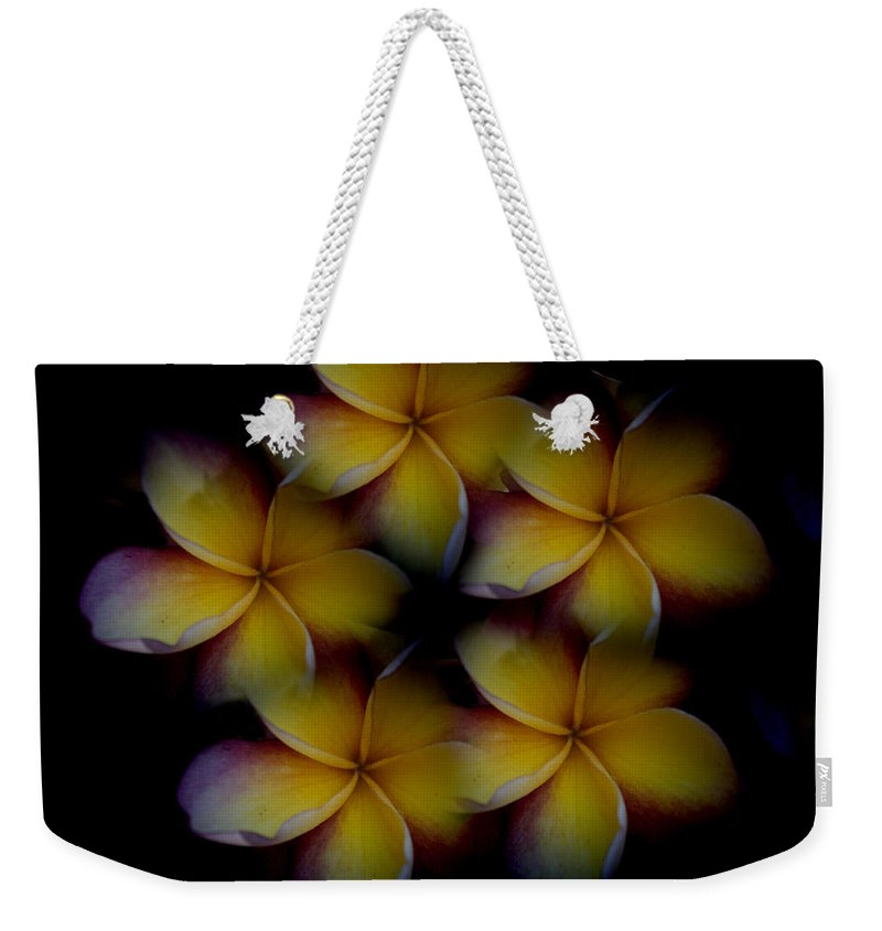 Frangipani Weekender Tote Bag featuring the photograph Frangipani Circle Of Color by Douglas Barnard