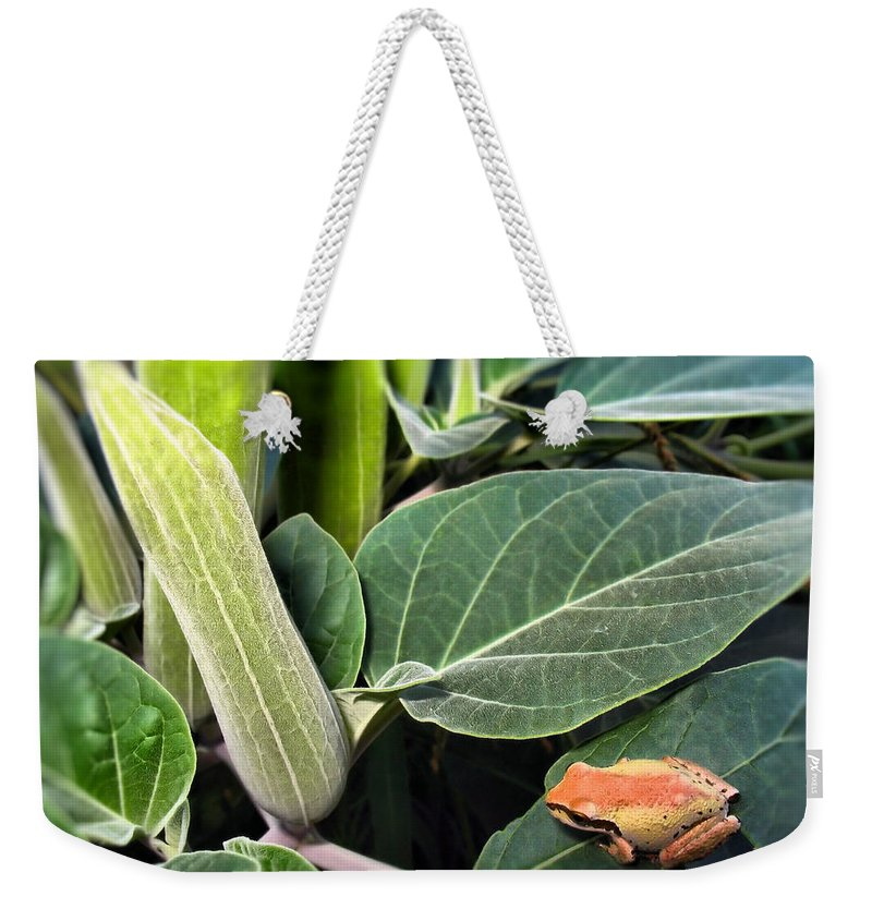 Frog Weekender Tote Bag featuring the photograph Frog And Moonflower by Joyce Dickens