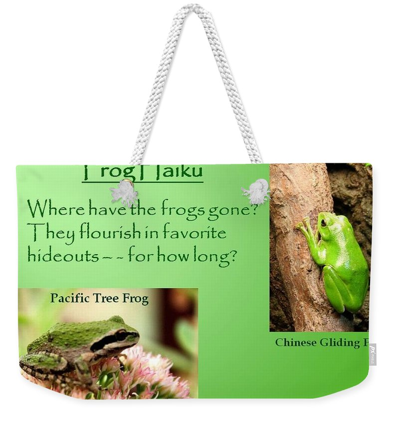 Chinese Gliding Frog Weekender Tote Bag featuring the photograph Frog Haiku by Laurel Talabere