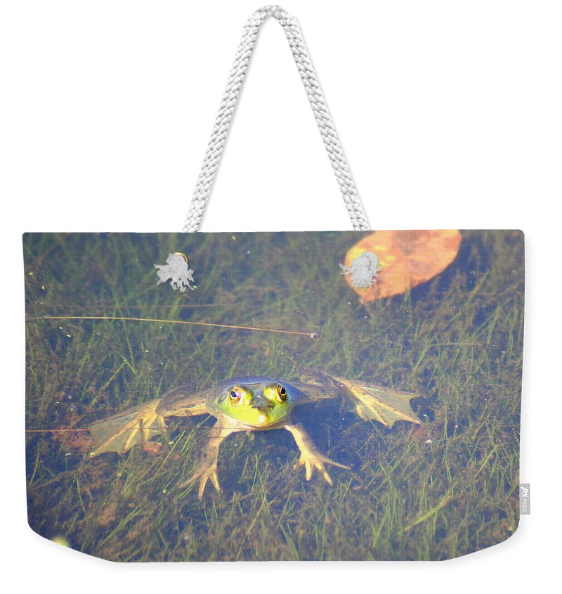 Frog Weekender Tote Bag featuring the photograph Froggie Sitting In The Water by Laurel Talabere
