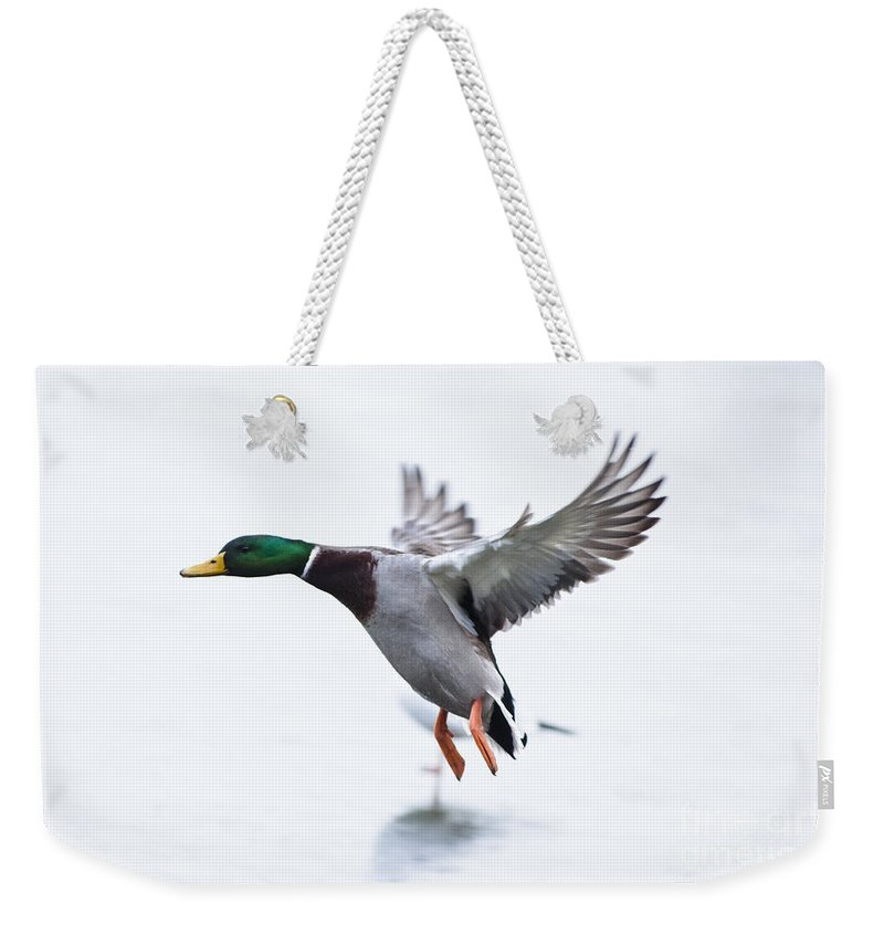 British Weekender Tote Bag featuring the photograph Frozen Lake by Andrew Michael