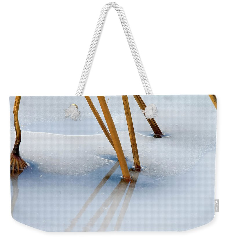 Ice Weekender Tote Bag featuring the photograph Frozen Lotus by Steve Stuller