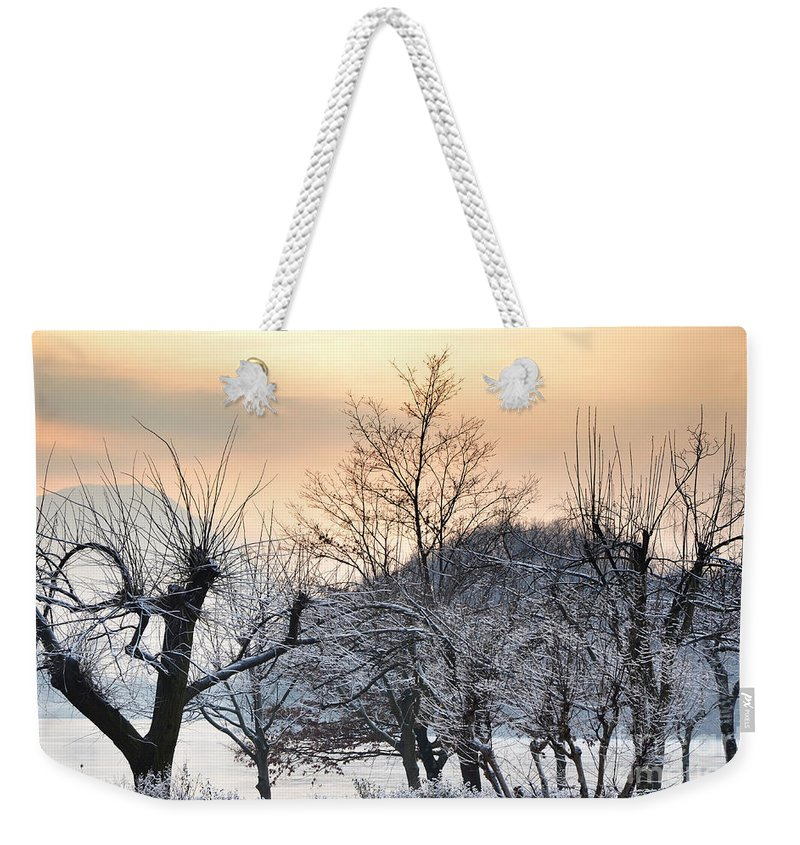 Frozen Weekender Tote Bag featuring the photograph Frozen Trees by Mats Silvan