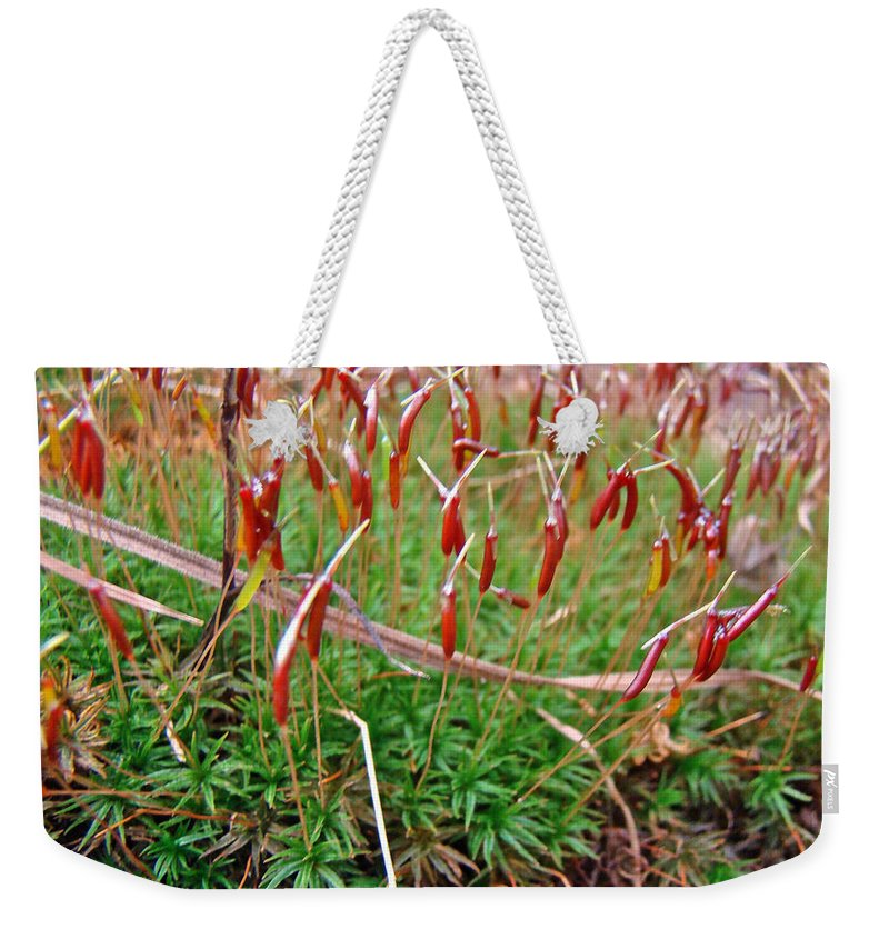 Moss Weekender Tote Bag featuring the photograph Fruiting Moss - Red And Green Tableau by Mother Nature