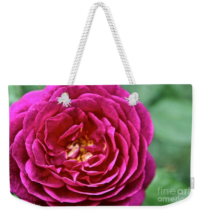 Garden Weekender Tote Bag featuring the photograph Full Bloom by Susan Herber