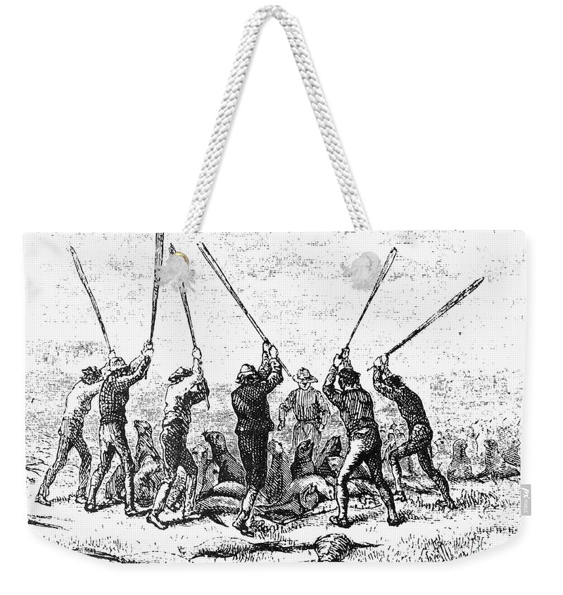 19th Century Weekender Tote Bag featuring the photograph Fur Trade: Baby Seals by Granger