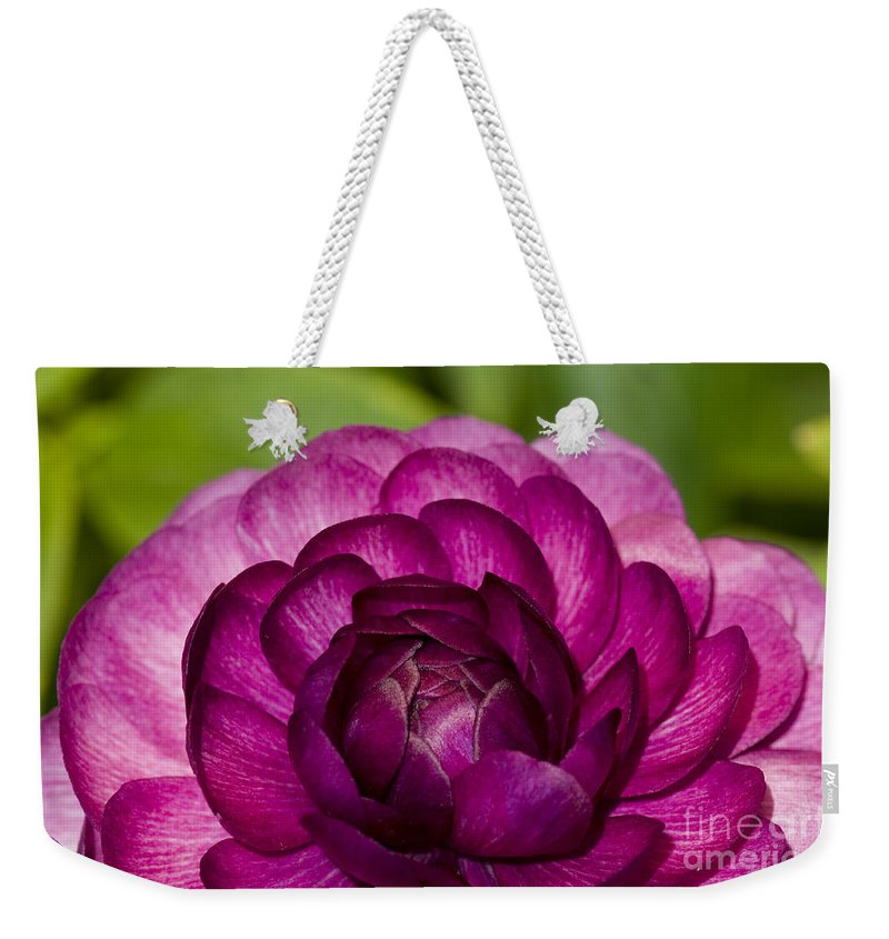 Bronstein Weekender Tote Bag featuring the photograph Garden Beauty by Sandra Bronstein