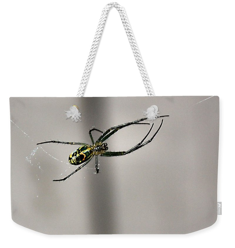 Black And Yellow Garden Spider Weekender Tote Bag featuring the photograph Garden Spider by Kristin Elmquist