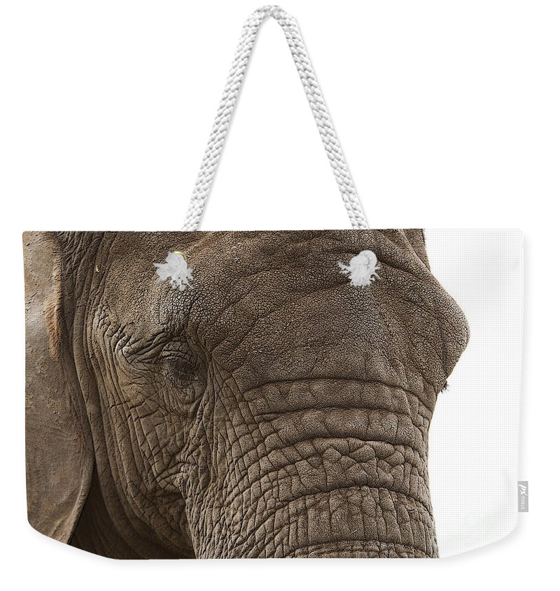 Gentle Giant Weekender Tote Bag featuring the photograph Gentle Giant by Sheila Laurens