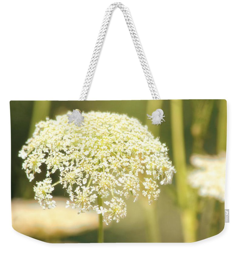 Flowers Weekender Tote Bag featuring the photograph Gently by Karol Livote