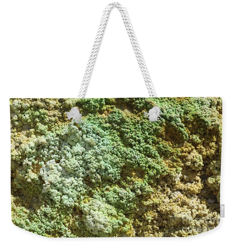 Day Weekender Tote Bag featuring the photograph Geothermally Active Area by Richard Roscoe