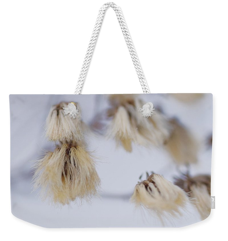 Dried Flowers Weekender Tote Bag featuring the photograph Get A Haircut Get A Real Job by Susan Capuano