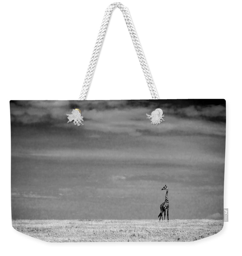 Serengeti National Park Weekender Tote Bag featuring the photograph Giraffe Serengeti National Park by Boyd Norton