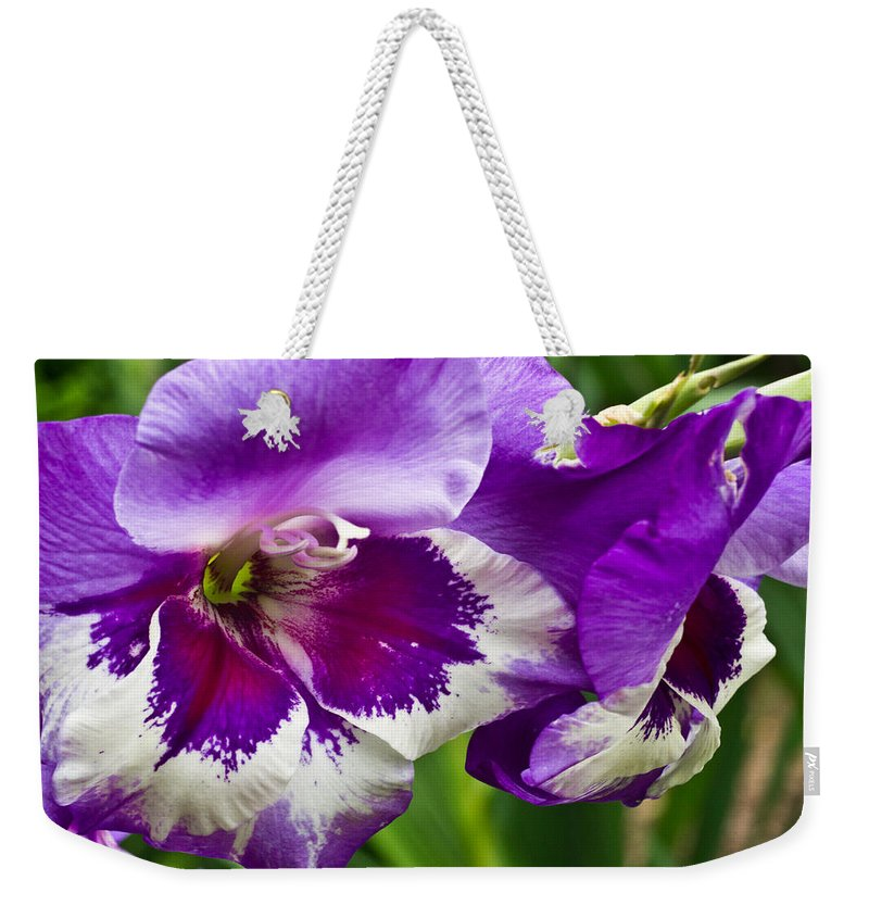 Gladiolus Weekender Tote Bag featuring the photograph Gladiola Blossom 2 by Douglas Barnett