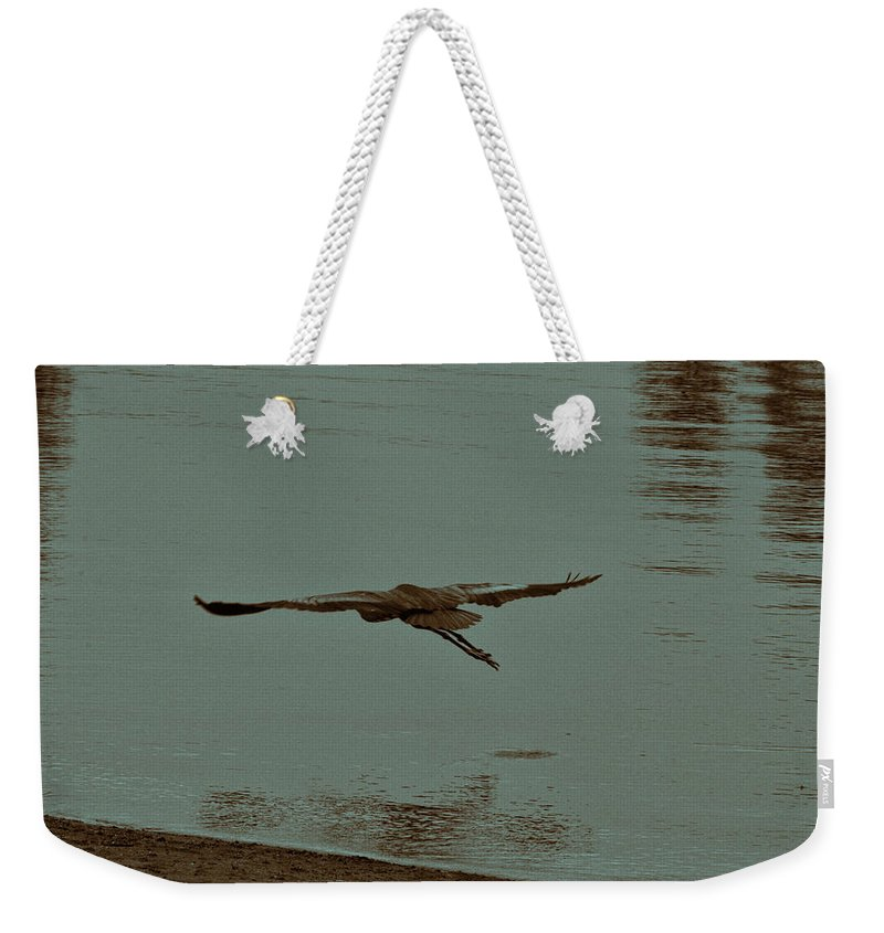 Blue Heron Weekender Tote Bag featuring the photograph Gliding Inches Above The Water by Douglas Barnard